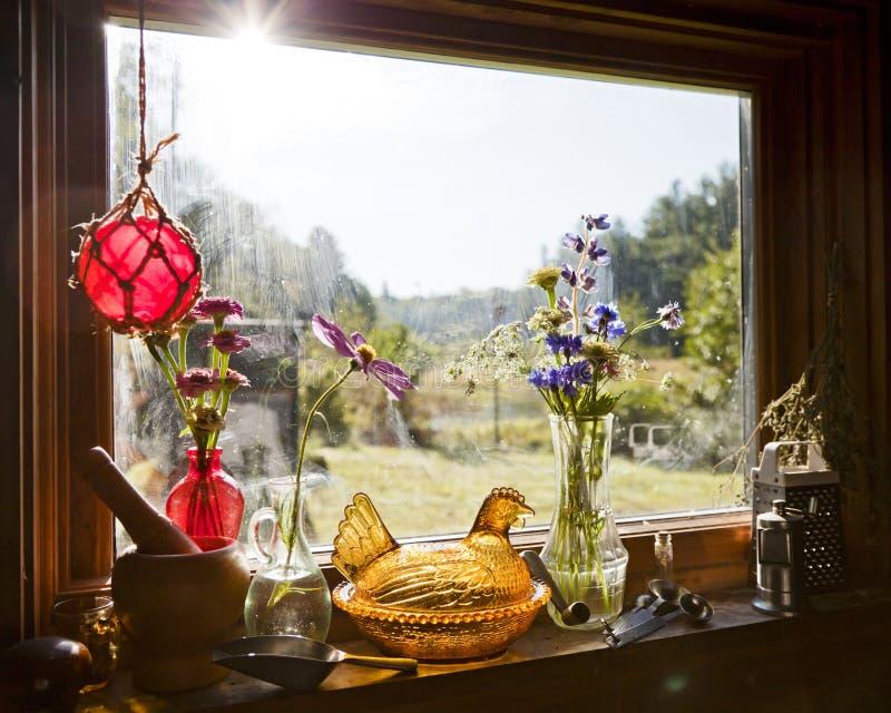Da manhã da luz solar vida ainda foto de stock royalty free