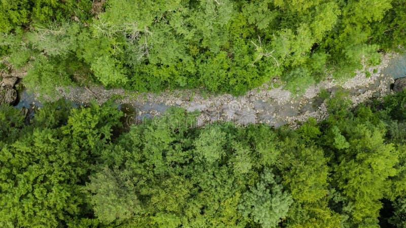 Da parte superior opinião aérea para baixo de montanhas de Cáucaso Forest Trees foto de stock