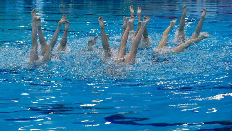 Da prática local nadadora sincronizado da equipe de Mallorca detalhe rotineiro fotografia de stock royalty free