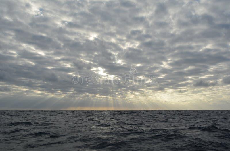 Da qualche parte nell'oceano fotografia stock libera da diritti