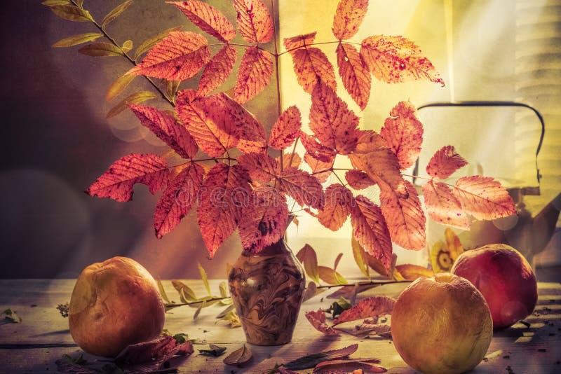 Da queda do outono do ramalhete ramos outonais das maçãs da vida ainda foto de stock royalty free