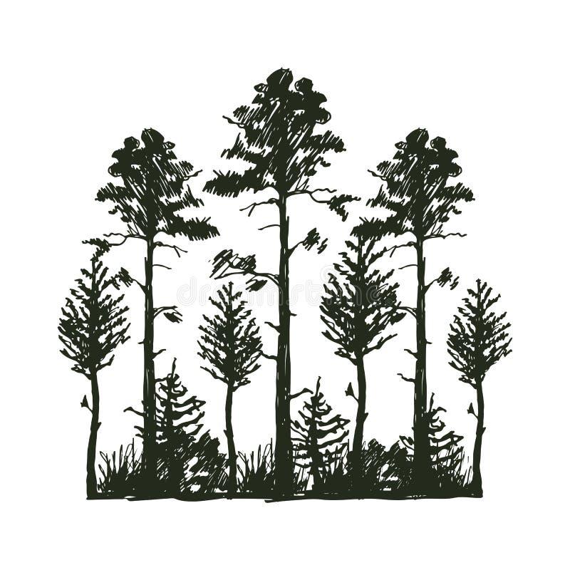 Da silhueta exterior do preto do curso da árvore crachá, cedro do ramo do abeto vermelho do pinho das partes superiores e sumário ilustração royalty free