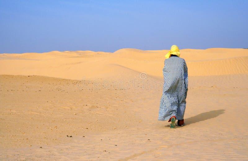 Da solo in deserto fotografia stock