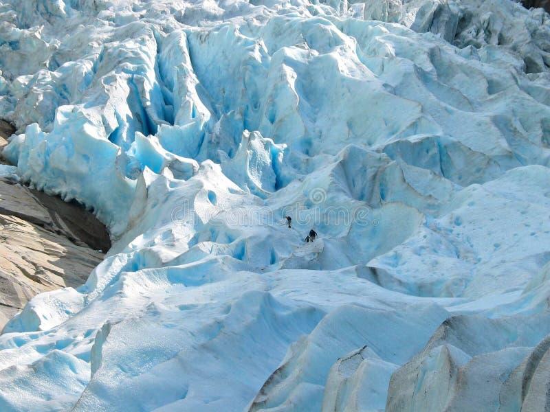 Da solo nel ghiaccio fotografie stock