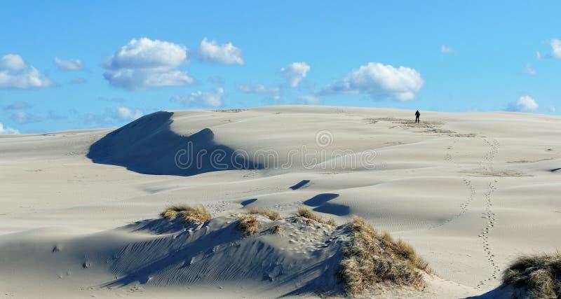 Da solo nelle dune immagine stock