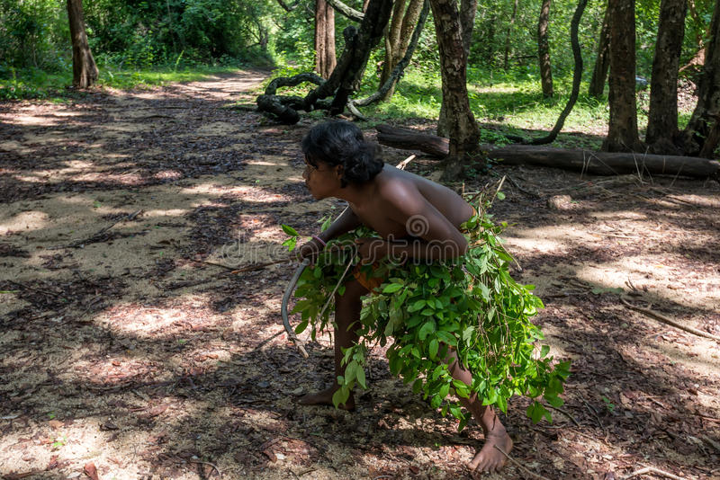DABANA, SRI LANKA - CIRCA DECEMBER 2016: Vedda man. Holding bow and arrows during hunting. Veddas are an indigenous people of Sri Lanka living in tribes in the stock photography
