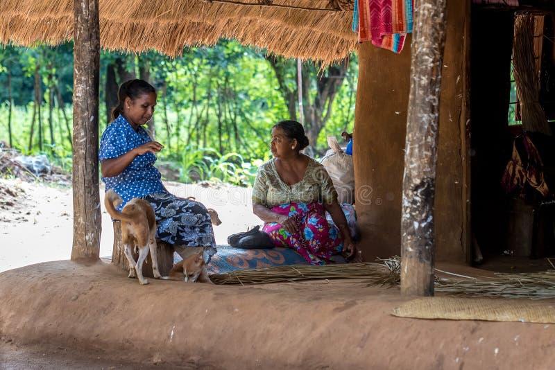 DABANA, SRI LANKA - CIRCA DECEMBER 2016: Vedda men. DABANA, SRI LANKA - CIRCA DECEMBER 2016: Vedda women in village. Veddas are an indigenous people of Sri Lanka royalty free stock photos