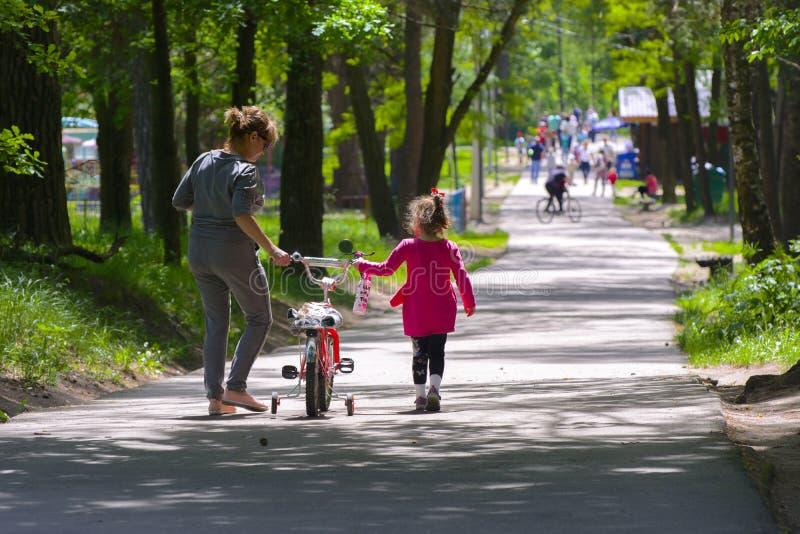 Dabushka e la nipote guidano una bicicletta nel parco della città fotografia stock