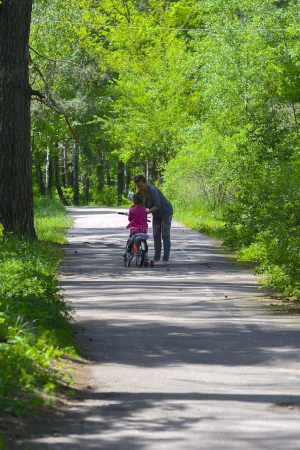 Dabushka e la nipote guidano una bicicletta nel parco della città fotografie stock