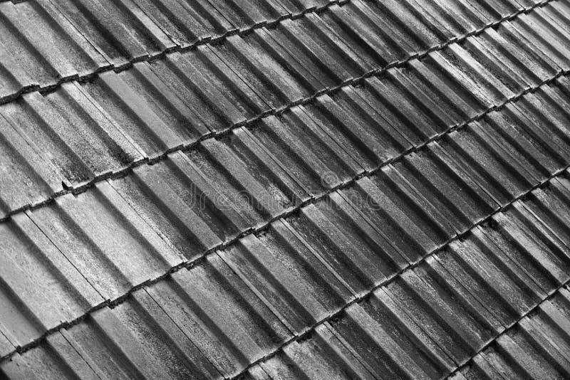 Dach-Beschaffenheit in B&W stockfotos