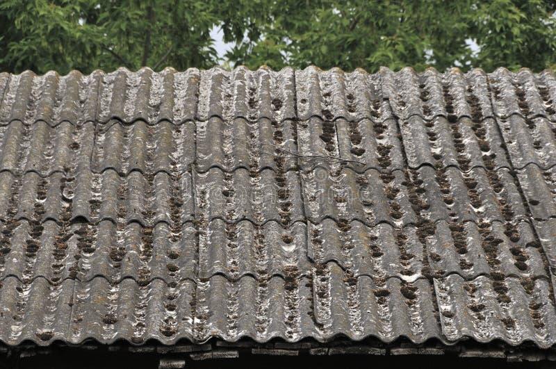 Dach dom na wsi, zakrywający z szarość łupkiem, w górę Stary dach zakrywający z łupkiem Zielony mech r między łupkiem zdjęcia stock