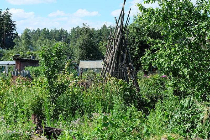 At the dacha. In the country stock photography