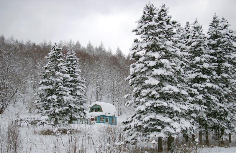 Dacha- lodge in winter. Dacha- lodge in mountain winter on Sakhalin stock photo