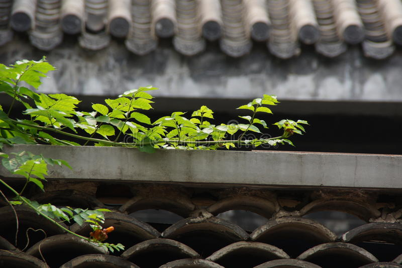 Dachanlage lizenzfreie stockbilder