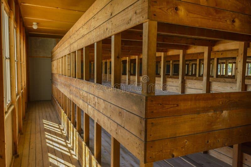Dachau-Konzentrationslager, hölzerne Betten lizenzfreie stockfotos