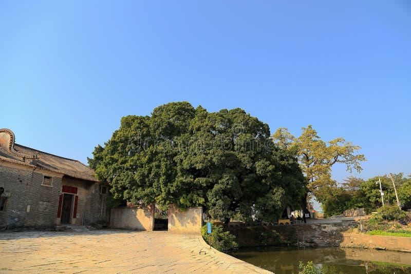 Dachitou oud dorp in Guangdong royalty-vrije stock fotografie