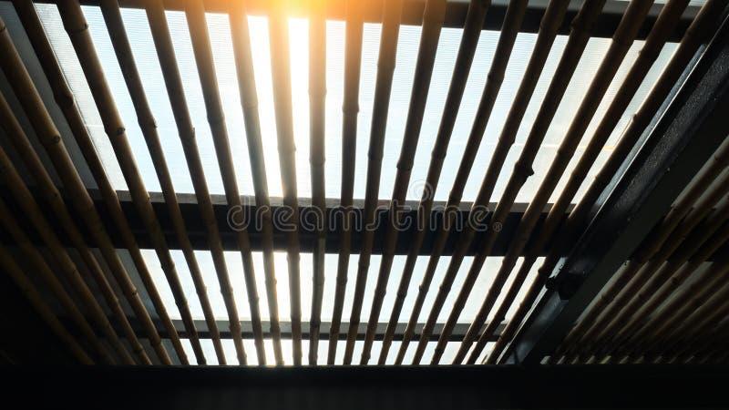 Dachowy bambusowy sylwetki i słońca tło zdjęcie stock