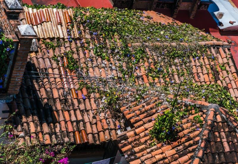 Dachplatten, Weinleseterrakottaschindeln stockfoto