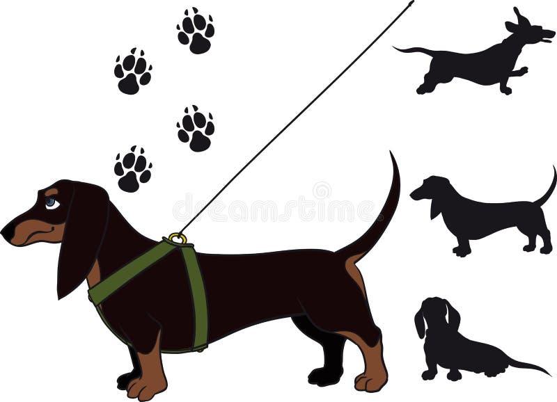 dachshund иллюстрация вектора