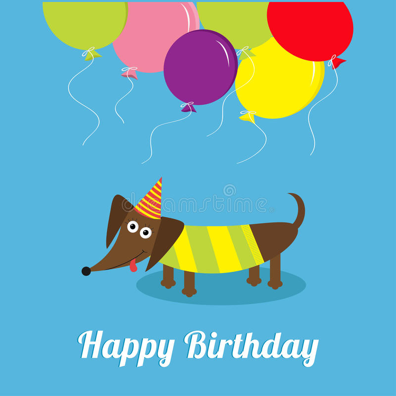 Dachshund dog with tongue. Striped shirt. Cute cartoon character. Balloons and hat. Happy Birthday greeting card. Flat design stock illustration