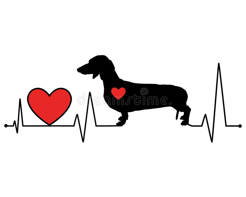 Dachshund silhouette heartbeat line vector illustration stock image