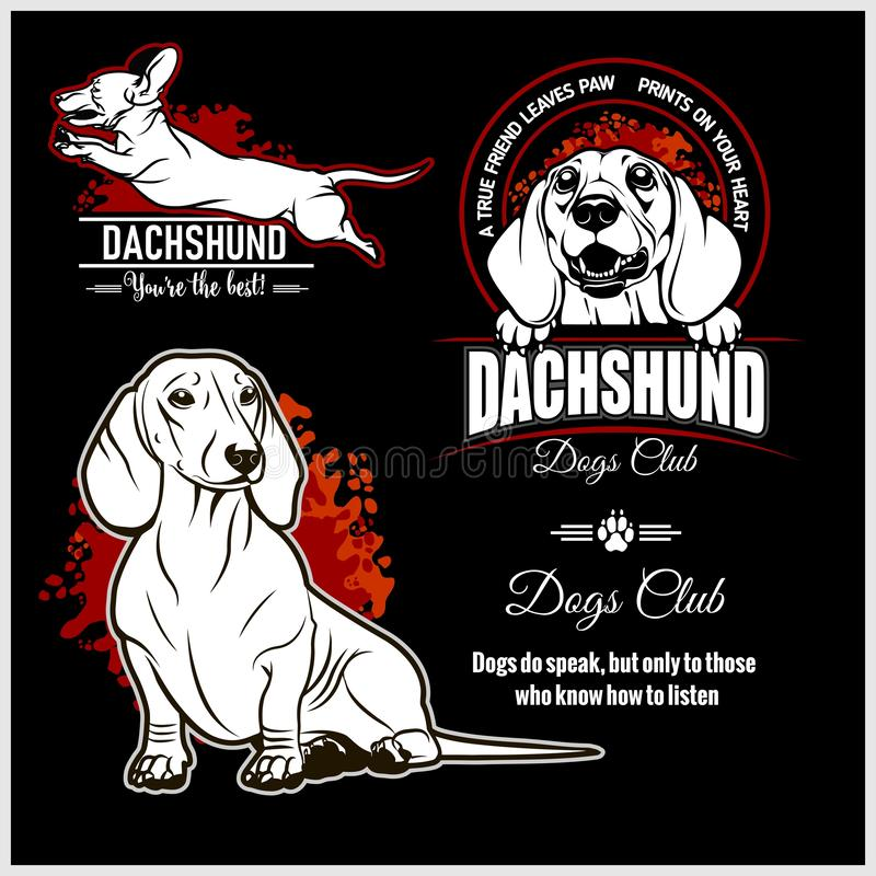 Free Dachshund - Vector Set For T-shirt, Logo And Template Badges Royalty Free Stock Photo - 168530545