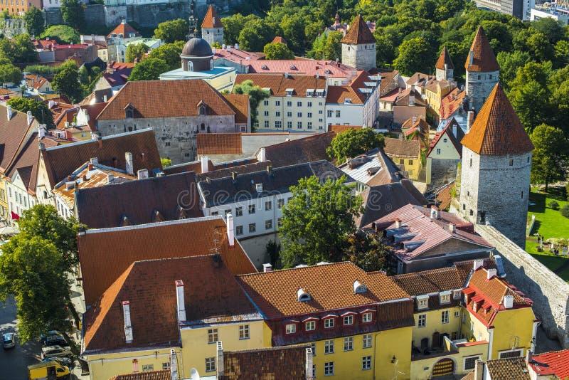 Dachspitzen Tallinns Estland Stockfotos
