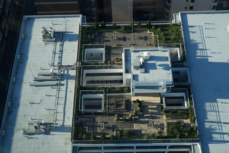 Dachspitzengarten des Gebäudes lizenzfreies stockbild