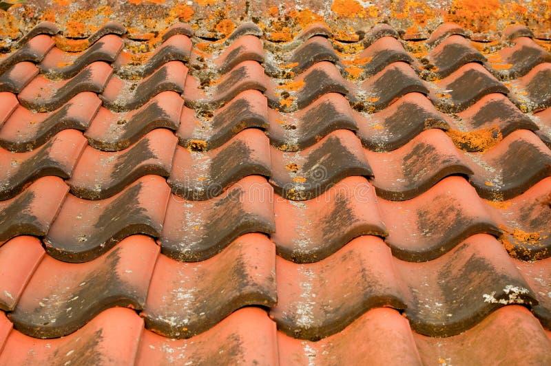 Dachziegel stockfoto