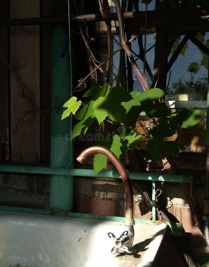 Dacza wciąż życie z kroplą woda i stary miedziany żuraw obraz royalty free