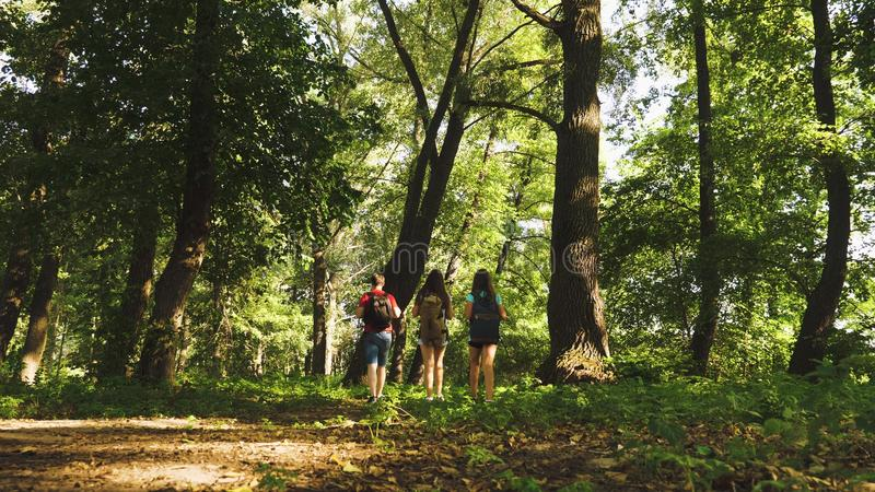 Dad and daughters, children travel in park in summer. teamwork travelers. Family on vacation travels in forest. friends. Tourists go camping in forest. People royalty free stock image