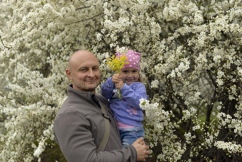 Dad with a little daughter in her arms standing near a flowering tree in the spring. royalty free stock image