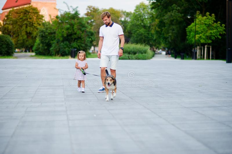 Dad with a little daughter walking a dog in the park. The baby is holding a nice beagle on a leash. Warm summer day stock photography
