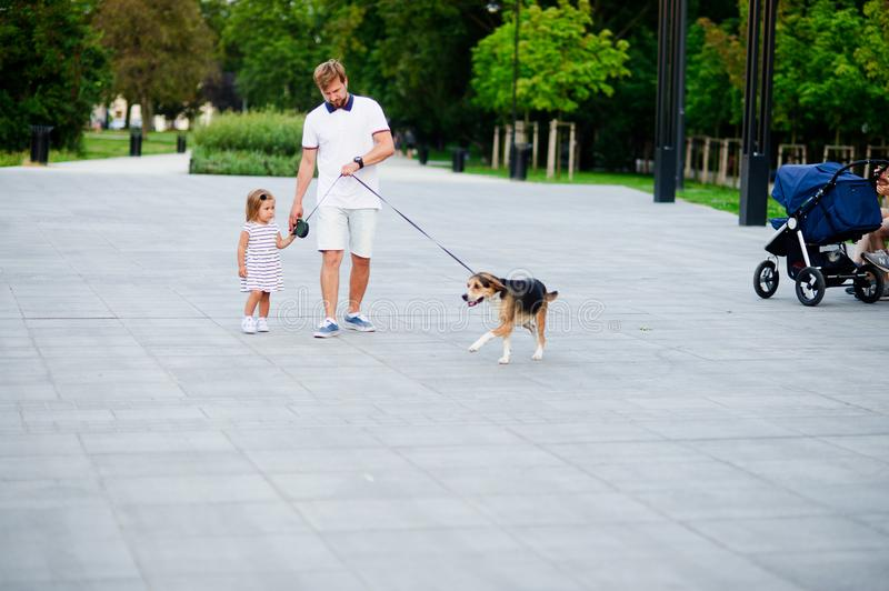 Dad with a little daughter walking a dog in the park. The baby is holding a nice beagle on a leash. Warm summer day royalty free stock images
