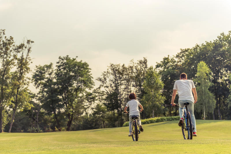 Dad and son cycling. Back view of young dad and his little son in casual clothes riding bikes in park stock images