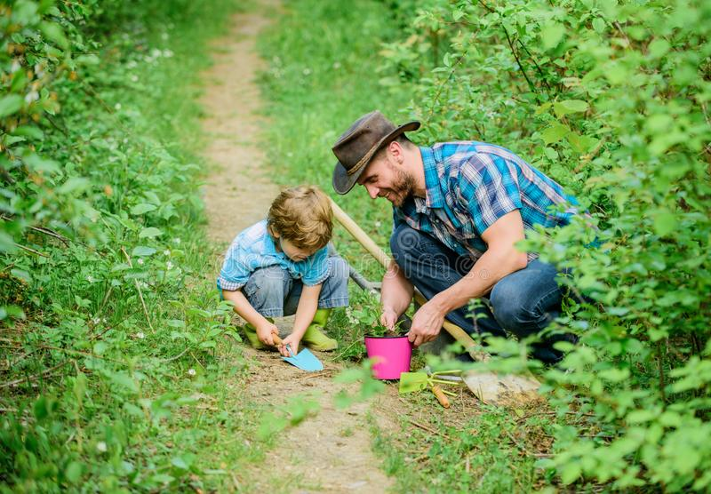 Dad teaching little son care plants. Spring gardening routine. Planting flowers. Little helper in garden. Farm family. Little boy and father in nature royalty free stock images