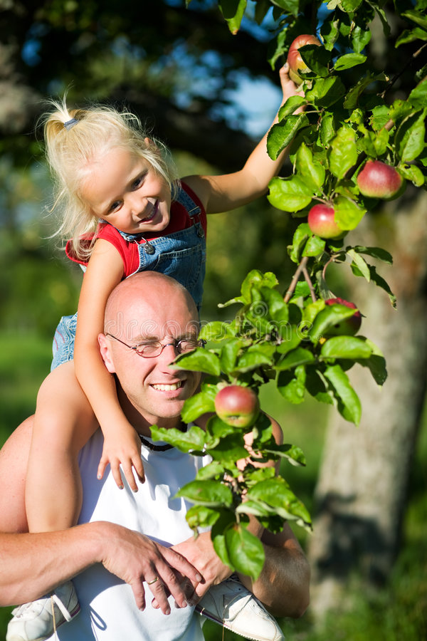 On daddy's shoulders royalty free stock photos