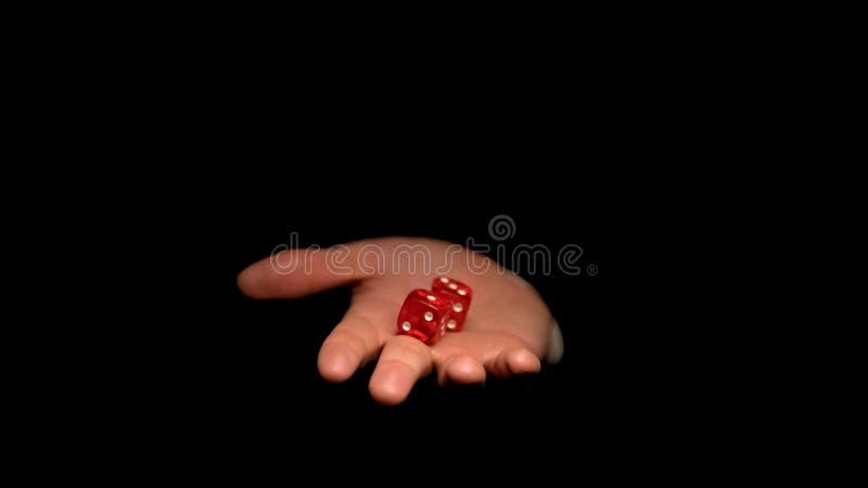 Dadi di gioco della tenuta maschio della mano, fortuna e fortuna nei giochi del casin?, concetto fotografie stock libere da diritti