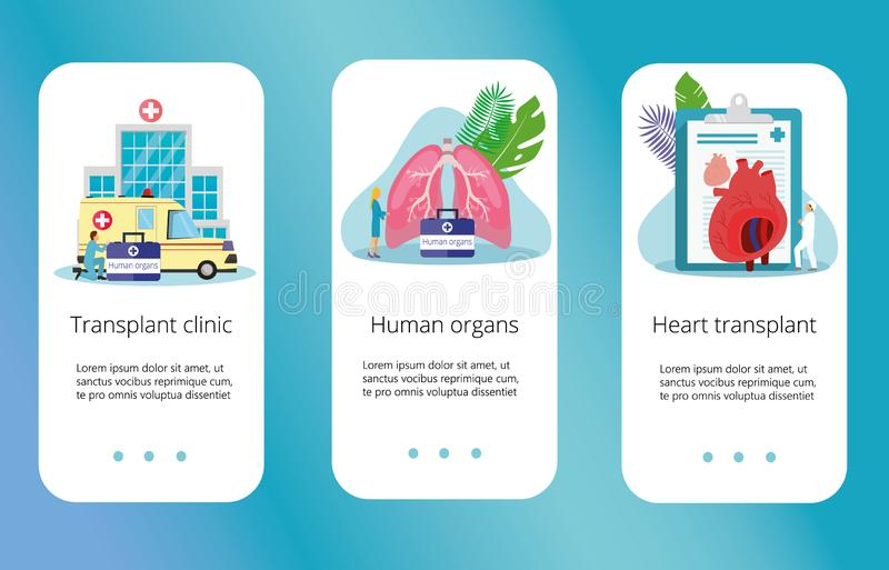 Dador de órgãos humano saudável ilustração royalty free