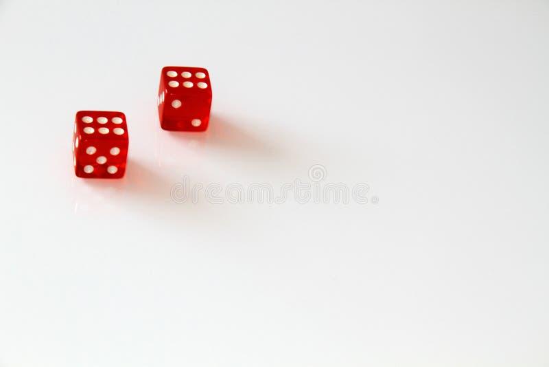 Dados do casino isolados no branco jogo isolate imagem de stock royalty free