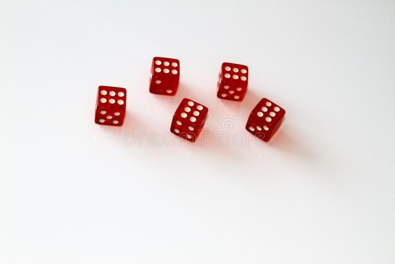 Dados do casino isolados no branco jogo isolate fotografia de stock
