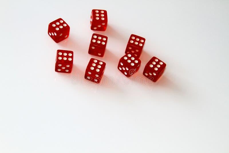 Dados do casino isolados no branco jogo isolate fotos de stock