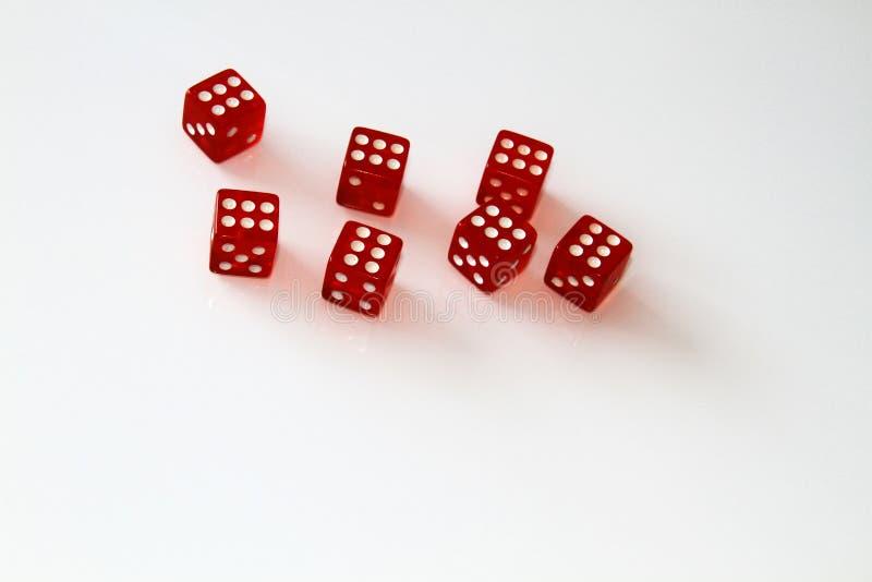 Dados do casino isolados no branco jogo isolate imagens de stock