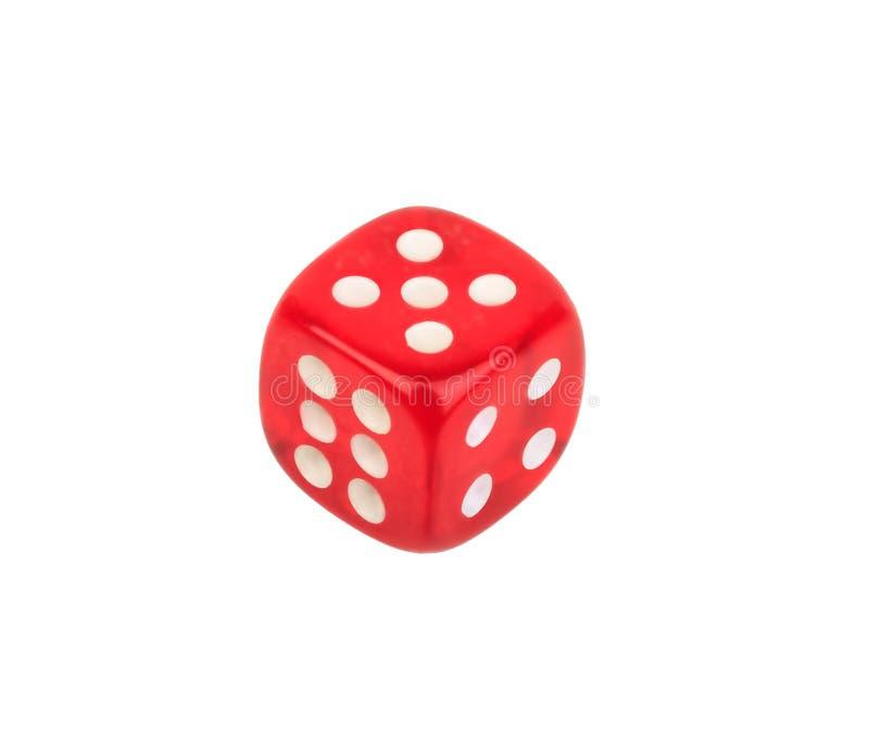Dados rojos con el número cinco en el top en el fondo blanco foto de archivo