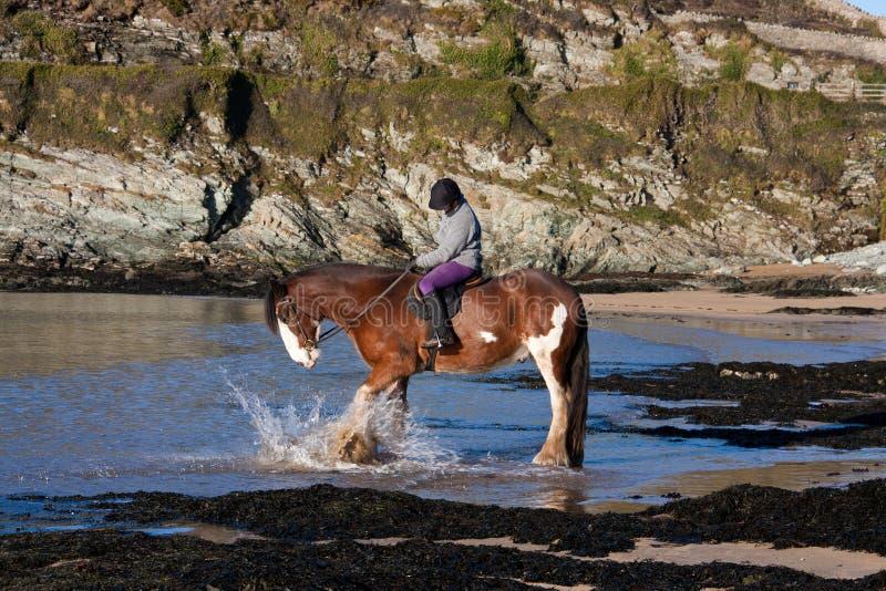 daffarch plażowy porth obrazy stock