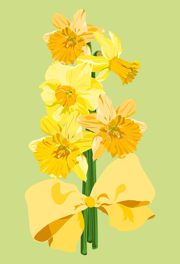 Download Daffodil bouquet stock vector. Illustration of springtime - 19151770