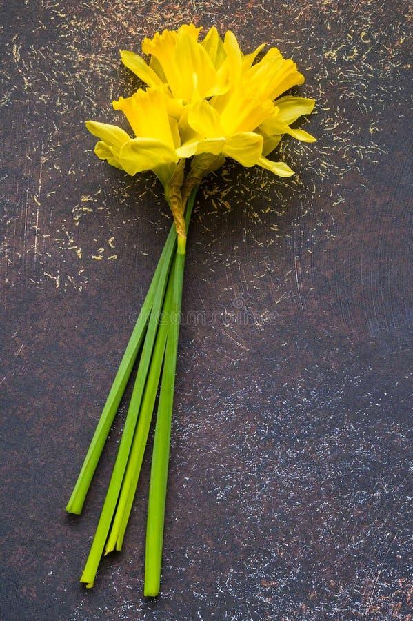 Daffodil - daffadowndilly, narciso e jonquil fotografie stock libere da diritti