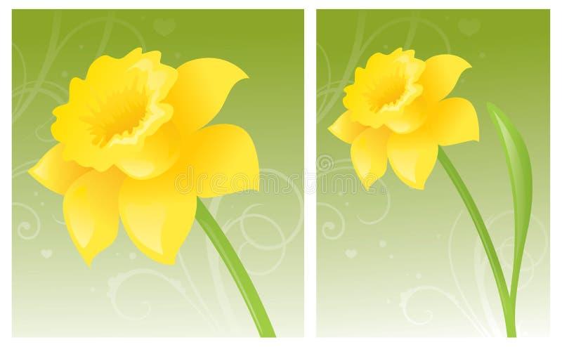 Daffodil dourado ilustração stock