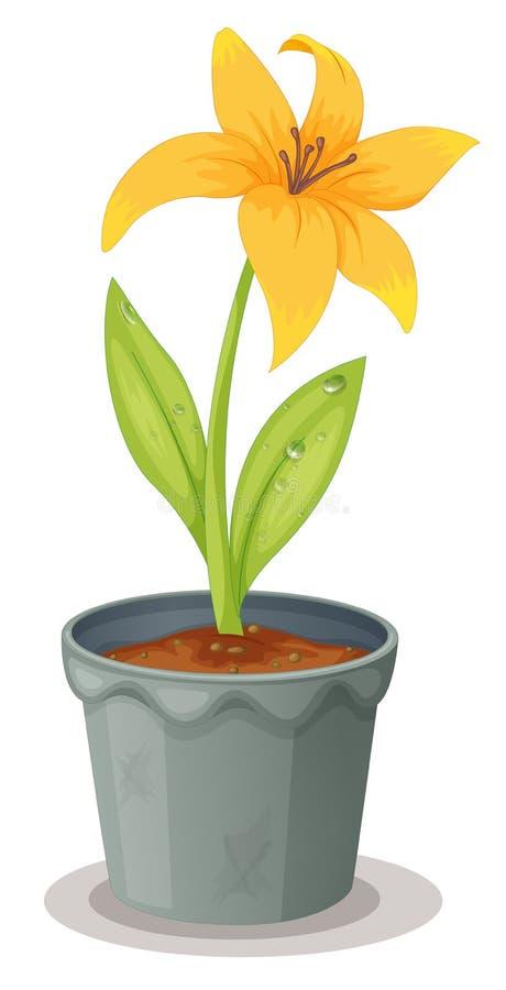 Daffodil em um potenciômetro ilustração do vetor