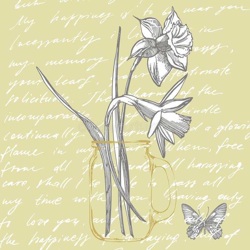 Daffodil or Narcissus flower drawings. Collection of hand drawn black and white daffodil. Hand Drawn Botanical stock illustration